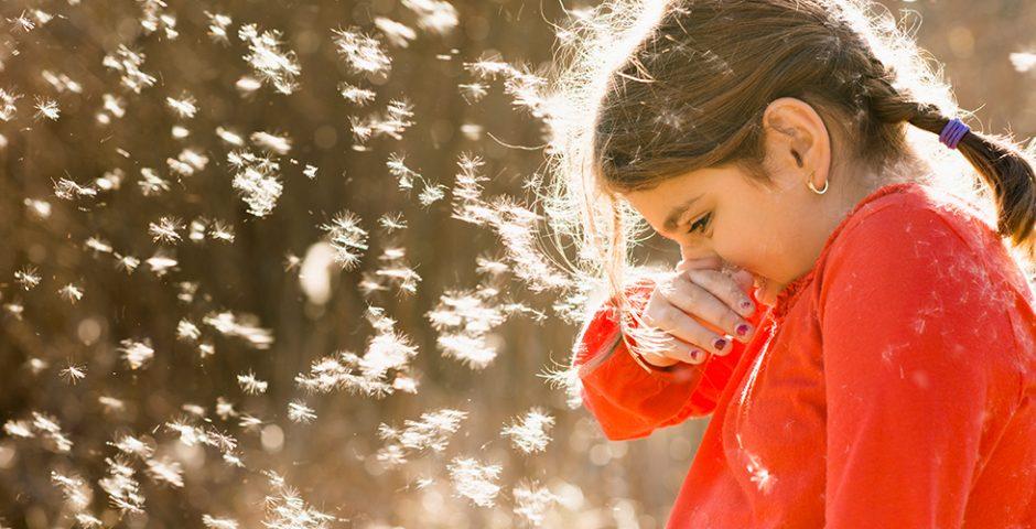 Alergia a la primavera: la polinosis