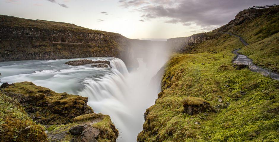 5 ideas para proteger el medio ambiente