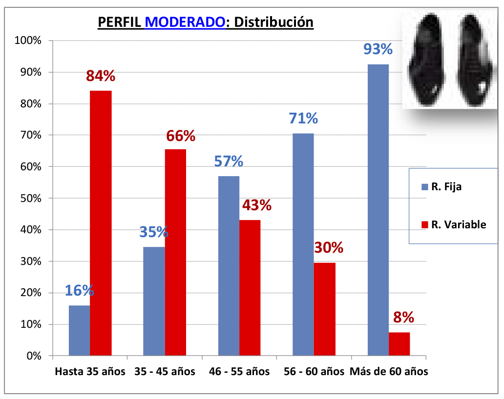PERFIL MODERADO - DISTRIBUCION