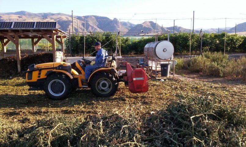Los beneficios del compost