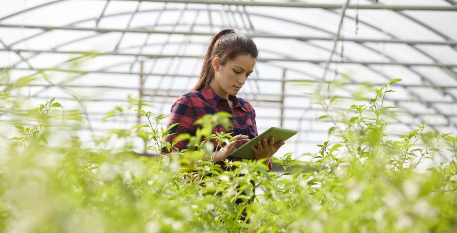 El valor del agrotech para el futuro de la alimentación