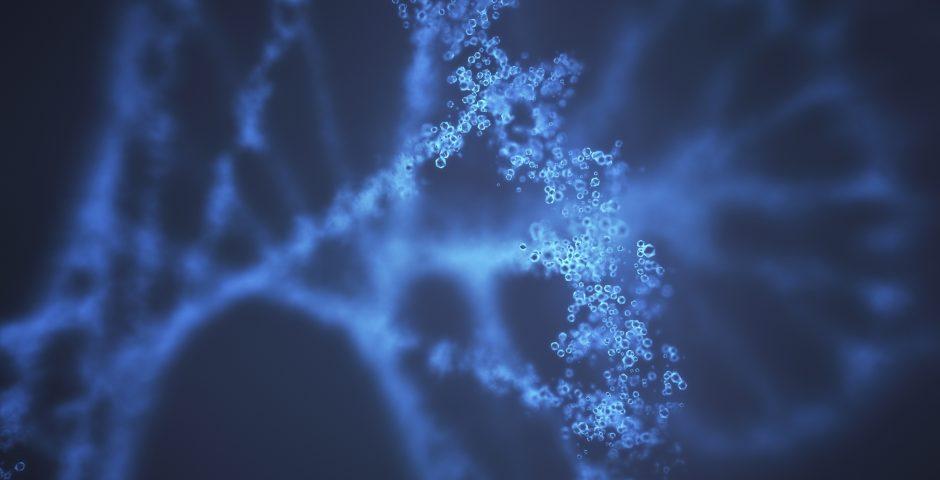 CRISPR: El nuevo salto en la ingeniería genética