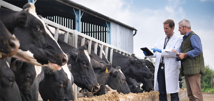 Una ganadería cada día más sostenible