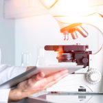Fuentes proteicas alternativas