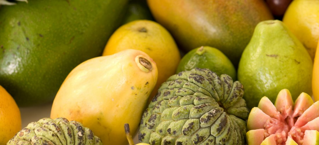 5 razones por las que los subtropicales están de moda