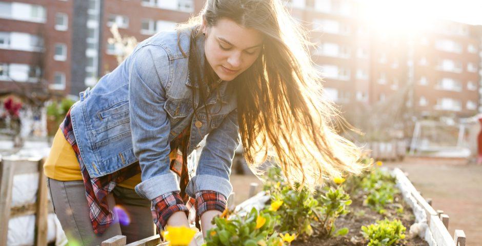 Las ventajas de tener un huerto urbano en casa