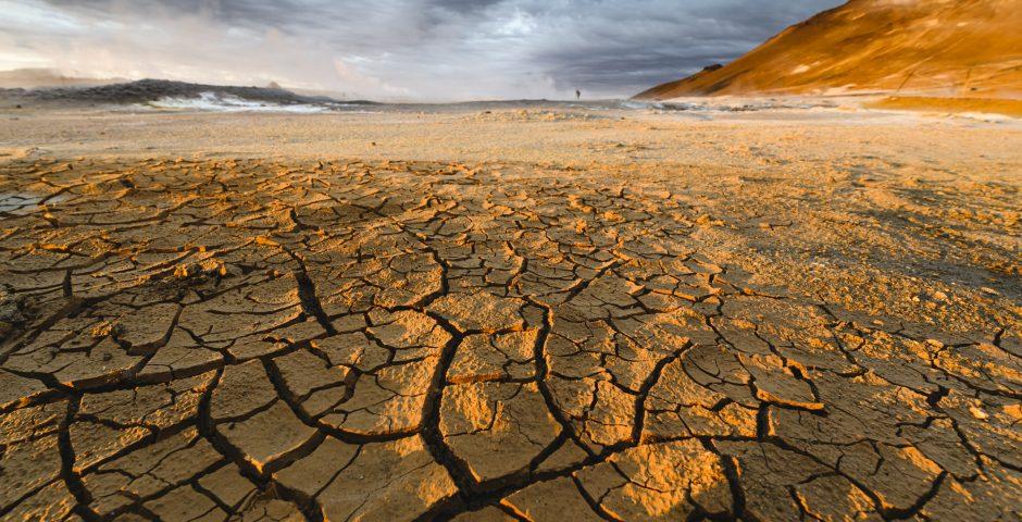 Grupo Cajamar entre las empresas líderes en la gestión del cambio climático