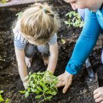 Qué debemos conocer del Día Mundial de la Educación Ambiental