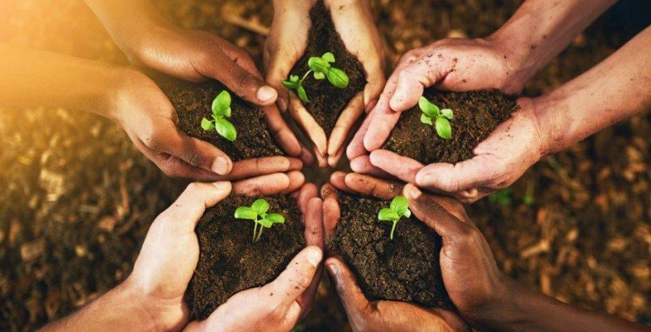 Cajamar valora las oportunidades que ofrecen los fondos Next Generation para el sector agroalimentario