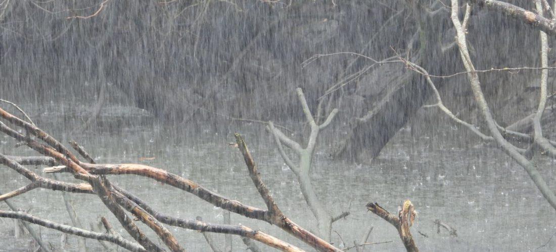 Cajamar habilita líneas de financiación especiales para los afectados por las lluvias torrenciales